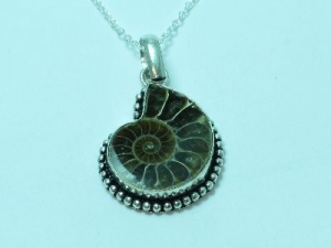 """Sterling Silver Ammonite necklace 16"""""""
